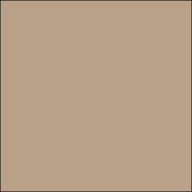 AMB 64 Light Caramel  - Farbmuster