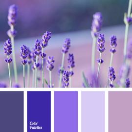 Kleurpalet 18