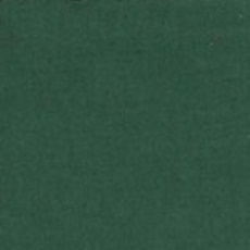 Michael Miller 183 - color sample Cypress