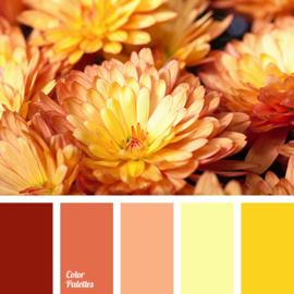Kleurpalet 54