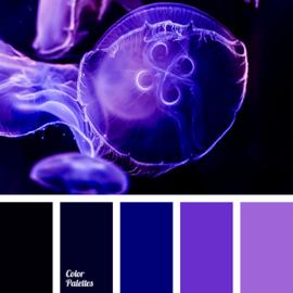 Kleurpalet 147