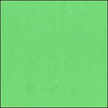 Michael Miller  68 - color sample Pastille