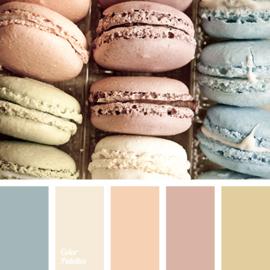 Kleur palet 144