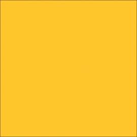 AMB 67 Dark Gold  - color sample