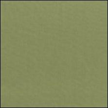 Michael Miller  78 - color sample Sage