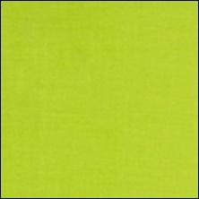 Michael Miller  108 - kleurstaal Lime