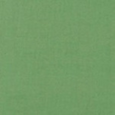 Michael Miller 181 - Kleurstaal Leaf