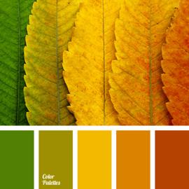 Kleurpalet 57