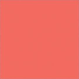 AMB 39 Coral - color sample