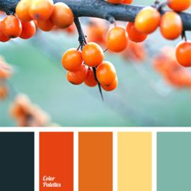 Kleurpalet 109