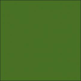 AMB 24 - Olive