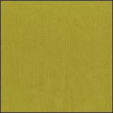 Michael Miller  36 - color sample Moss
