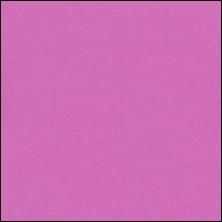 Michael Miller 24 - color sample Peony
