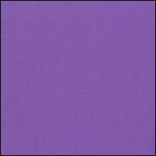 Michael Miller 1 - color sample Lavender