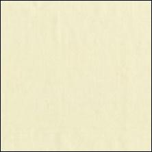 Michael Miller 45 - color sample Cream