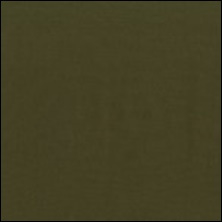 Michael Miller  47 - color sample Herb