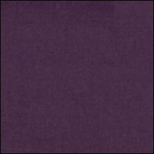 Michael Miller  93 - color sample Plum