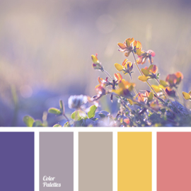 Kleurpalet 132