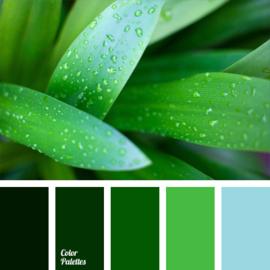 Color scheme 10