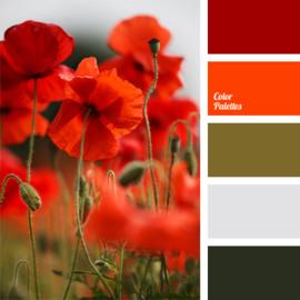 Color scheme 11