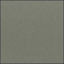 Michael MiIler - 40 Stone