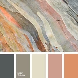 Kleurpalet 56