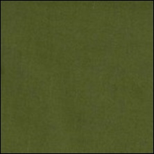 Michael Miller  97 - color sample Loden