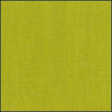 Michael Miller  144 - color sample Acid