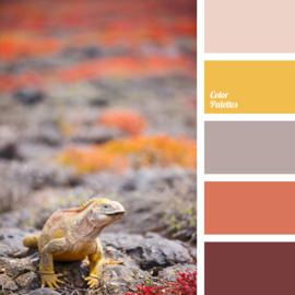 Color scheme 8