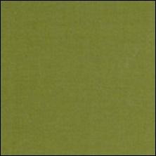 Michael Miller  98 - kleurstaal Olive