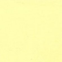 Michael Miller - 239 Butter