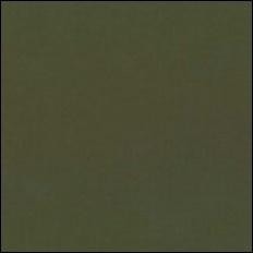 Michael MiIler 198 - kleurstaal Camouflage