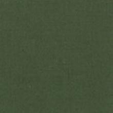 Michael Miller 240 - color sample Chive