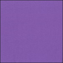 Michael Miller - 1 Lavender