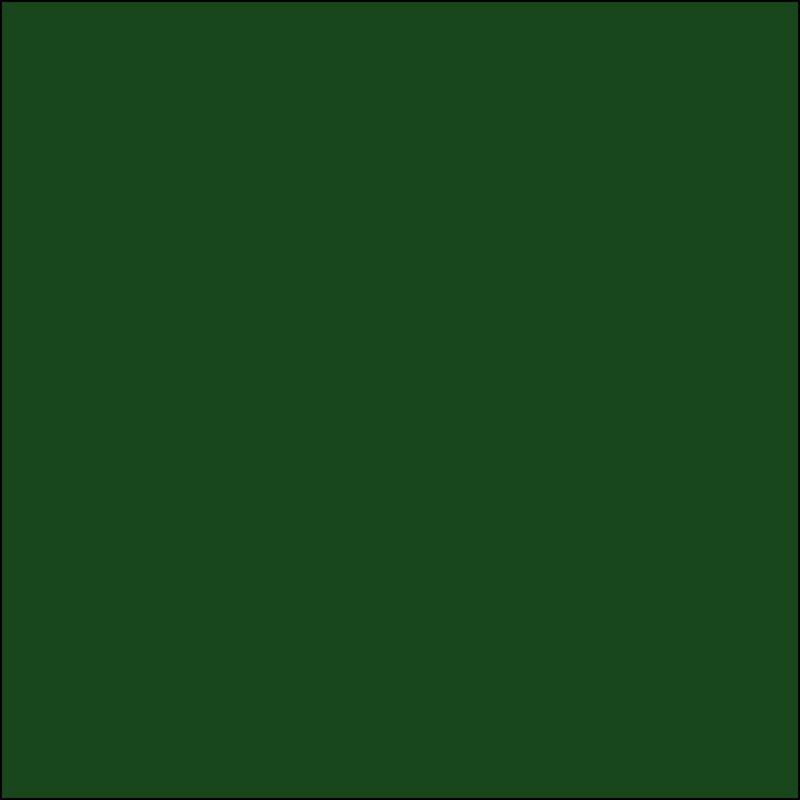 AMB 113 Forest - kleurstaal