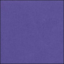 Michael Miller 151 - Hyacinth