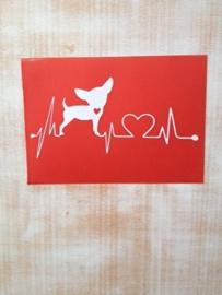 heartbeat chihuahua