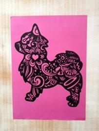 chihuahua fier