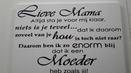 Moeder 0013