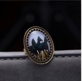 Zwarte paarden ring