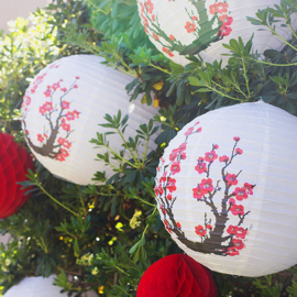 Kersenbloesem feest lantaarn