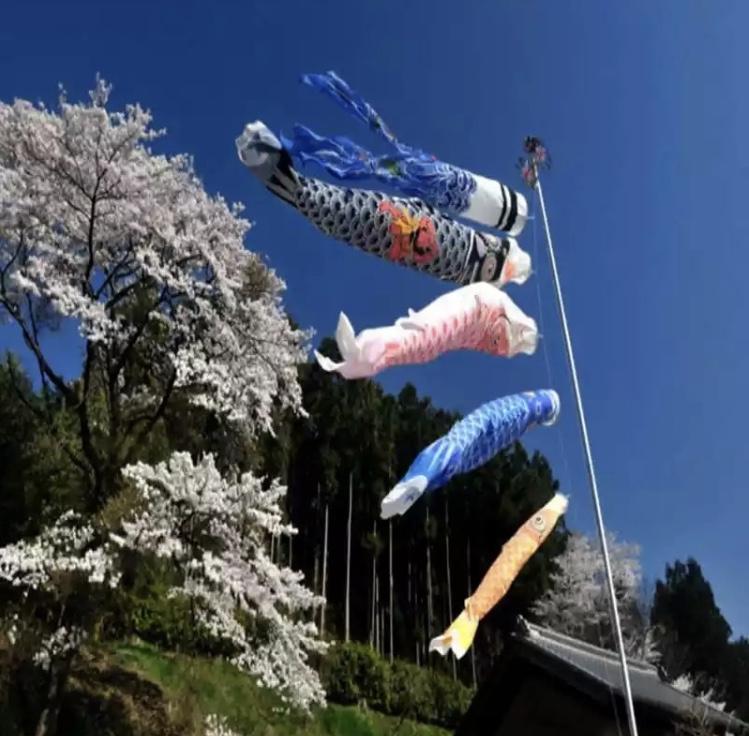Japanse karperfeest / sushi windzak of vlag