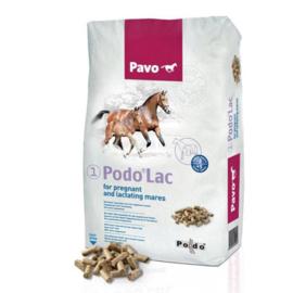 Pavo PodoLac (Podo-1)