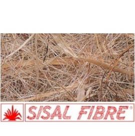 Sisal Fibre Cocco-Sisal-Meliga-Brattea, nestmateriaal voor kormsnavels 500 gram