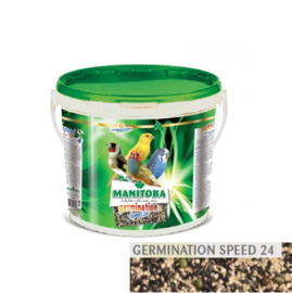Manitoba Germination Speed 24 - kiemzaad per kilogram