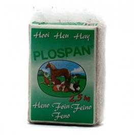 Plospan Hooi