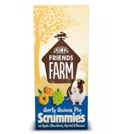 Tiny Friends Farm Gerty Guinea Pig Scrummies