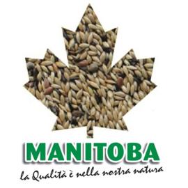 Manitoba T3 - kanariezaad 20 kg