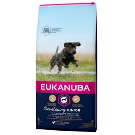 Eukanuba Developing Junior Large, 15 kg