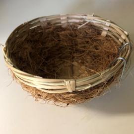 Pitrietnestje met kokos